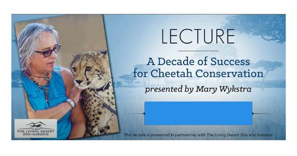 A Decade of Success for Cheetah Conversation
