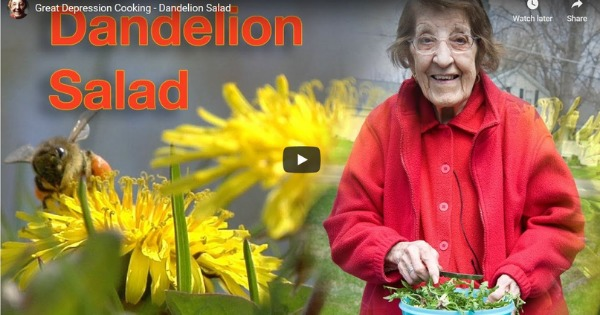 Great Depression Cooking – Dandelion Salad