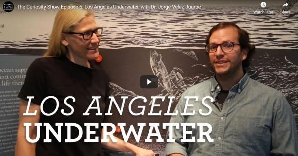 Los Angeles Underwater, with Dr. Jorge Velez-Juarbe