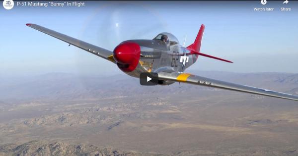 """P-51 Mustang """"Bunny"""" In Flight"""