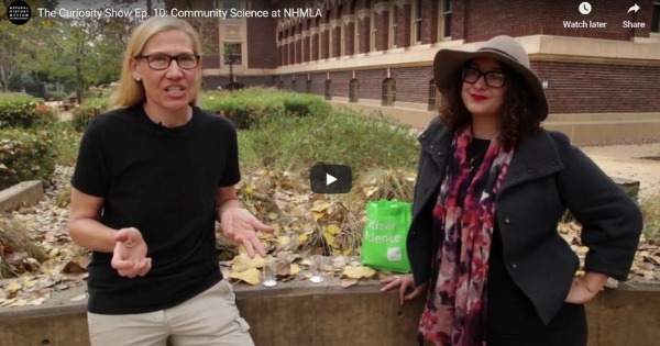 Read more about the article The Curiosity Show Ep. 10: Community Science at NHMLA