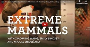 Read more about the article The Curiosity Show Ep.16 – Extreme Mammals