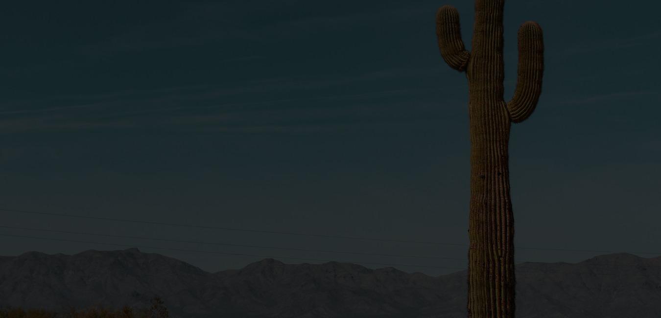 Cactus Club Website Background